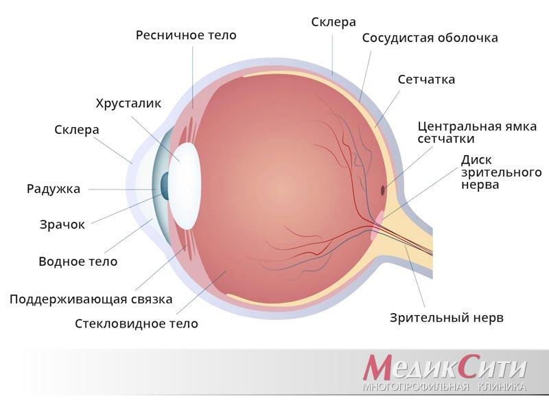 Первая помощь при травме глаза.