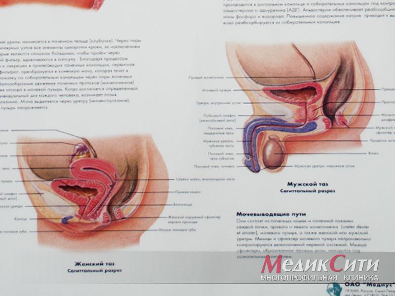 Лечение микоплазмоза в МедикСити