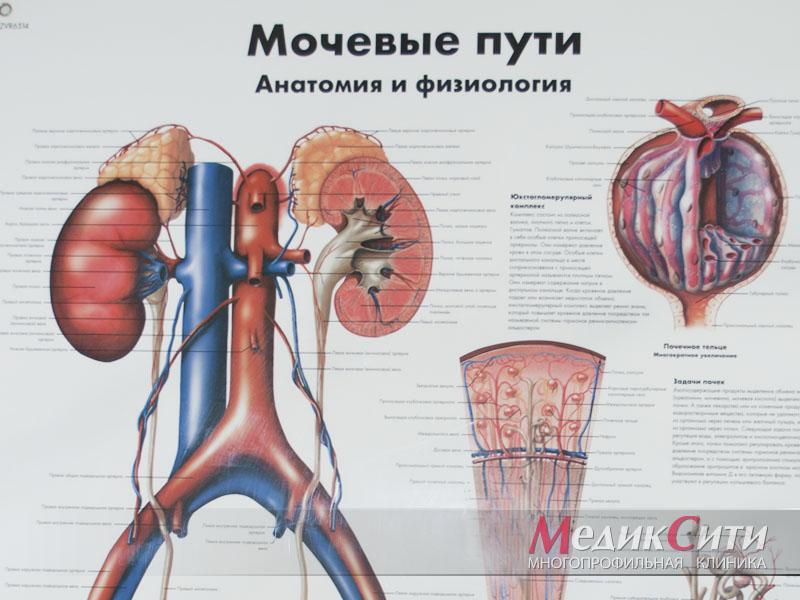kak-lechit-impotentsiyu-pri-prostatite